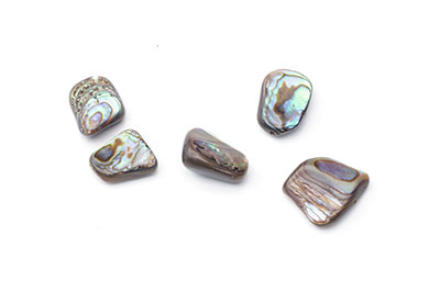 coquillage abalone nugget 10x14mm x1fil