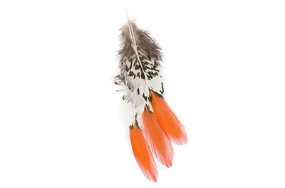 Plume 10 à 15cm orange x10pcs