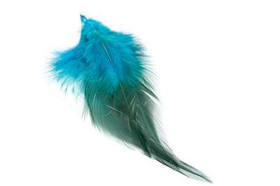 feather 12 to 15cm turquise x50pcs