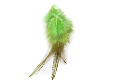 feather 12 to 15cm green x50pcs